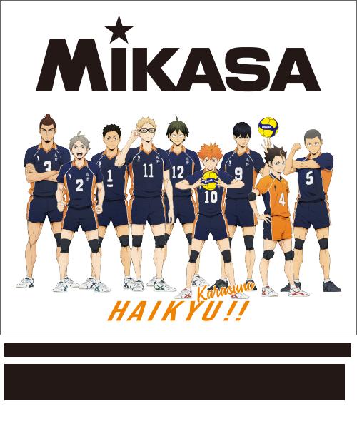MIKASA×ハイキュー!! プリントイメージ<烏野>